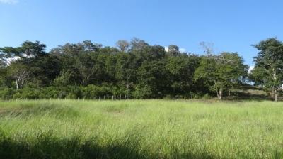 Chácara 32 Hectares a 10km de Bonito MS